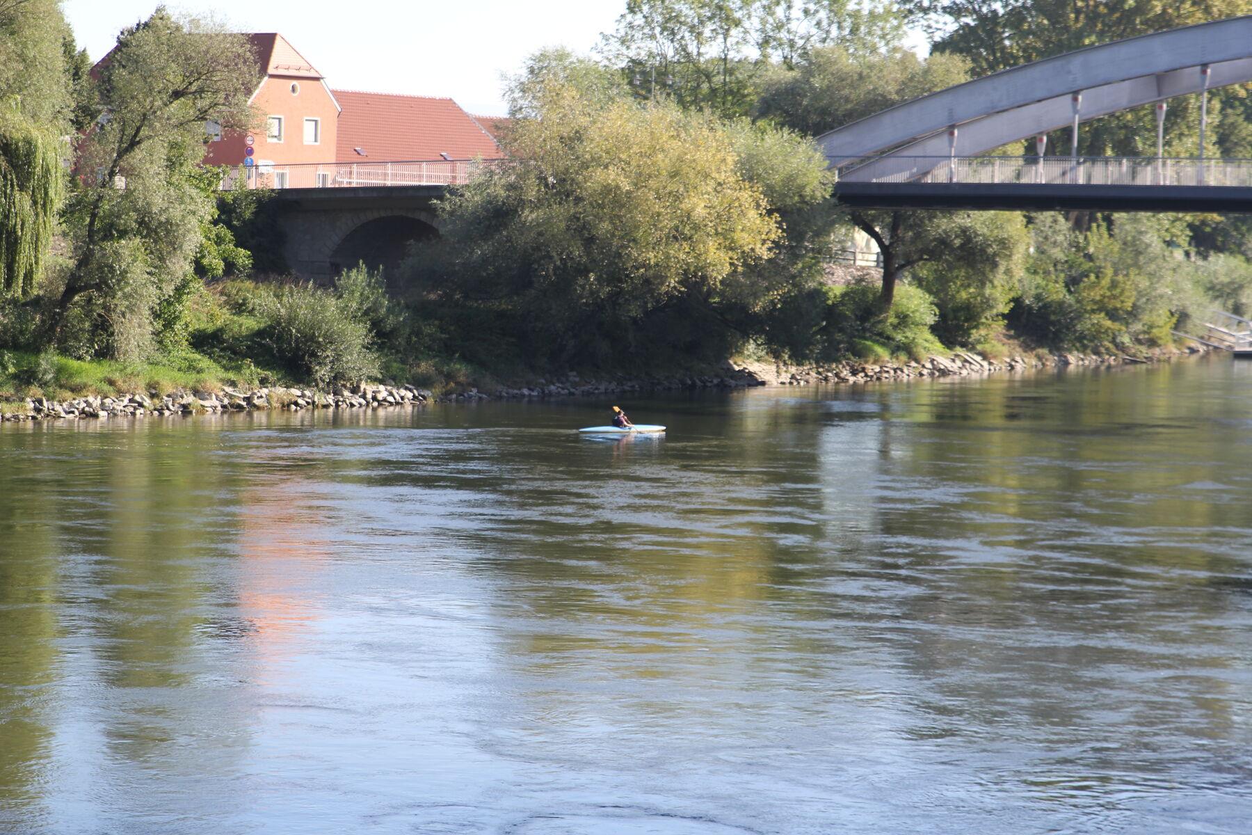 Kanufahren auf der Donau